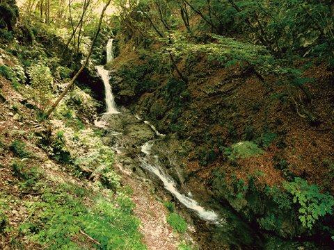 丹波山村で大自然を満喫しよう | 脱・メタボウォーキング