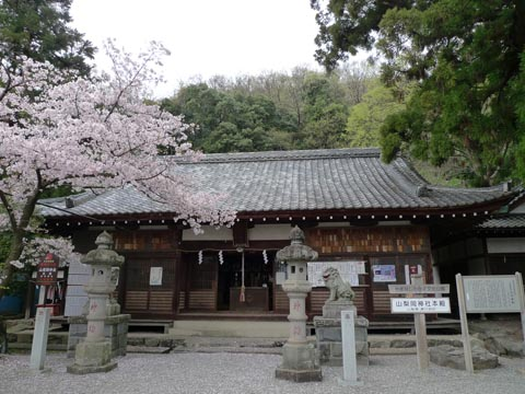 1005yamanashioka2.jpg