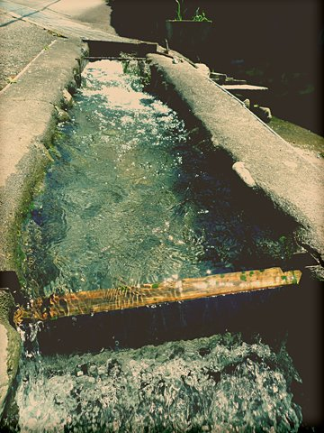きれいな水路