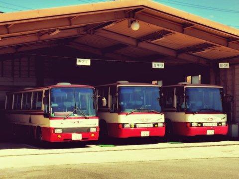 bus201111.jpg