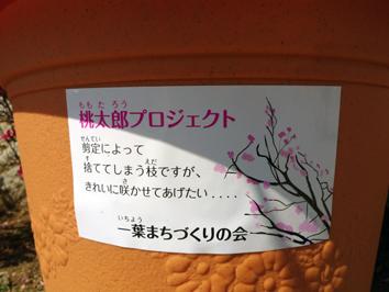 enzaneki-minami2.jpg