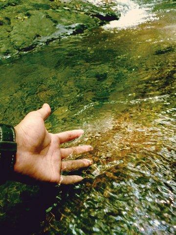 キレイな水