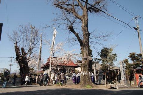 天津司神社