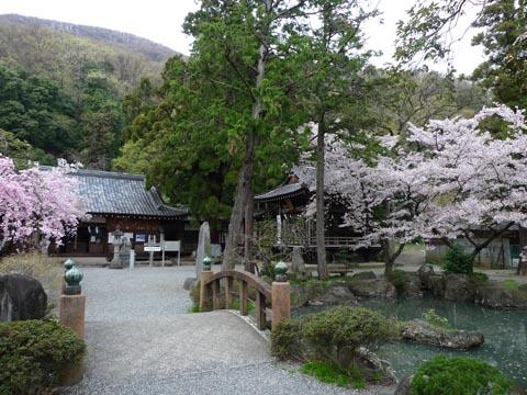 1005yamanashioka1.jpg