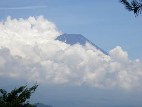 富士山も雲・・・