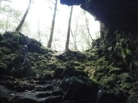 洞窟入口から上を見ると
