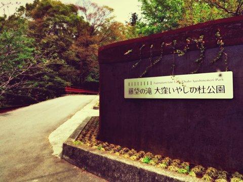 fujinuta1.jpg