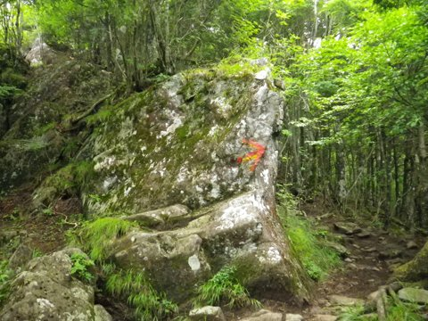 岩、岩、岩!