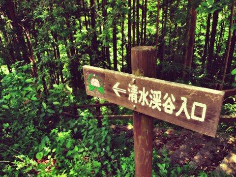 shimizu-kanban.jpg
